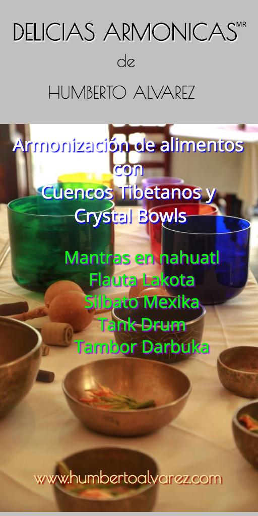 delicias armónicas flyer 2017.jpeg